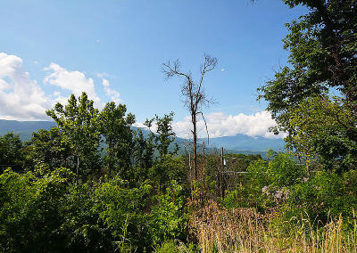 Sevier County Residential Lots & Land For Sale: 945 Deer Path Lane