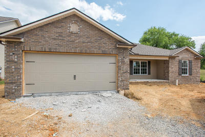 Knoxville Single Family Home For Sale: 5520 Meadow Wells Drive