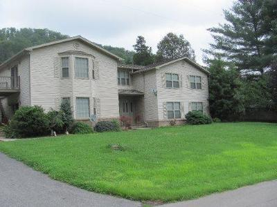 Tazewell TN Single Family Home For Sale: $224,900
