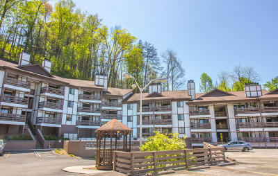 Gatlinburg Condo/Townhouse For Sale: 616 Turkey Nest Rd Rd #302