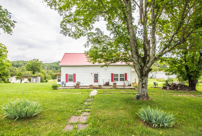 Sevierville Single Family Home For Sale: 1113 Holbert Cemetery Rd Rd