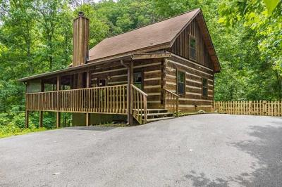 Sevierville Single Family Home For Sale: 2013 Spotted Fawn Way