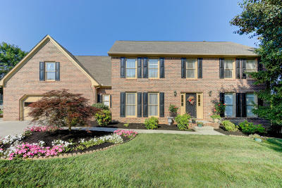 Knoxville Single Family Home For Sale: 233 Long Bow Rd