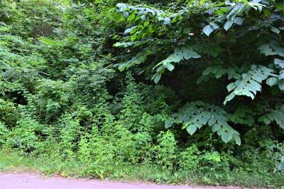 Sevierville Residential Lots & Land For Sale: Lot 94 Highpoint Drive