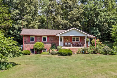 Loudon Single Family Home For Sale: 4300 Malone Rd