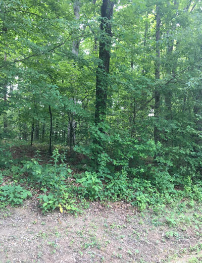 Loudon County Residential Lots & Land For Sale: Oohleeno Way
