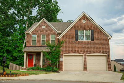 Knoxville Single Family Home For Sale: 3456 Teal Creek Lane