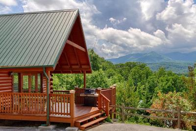 Gatlinburg Single Family Home For Sale: 960 High Mountain Way