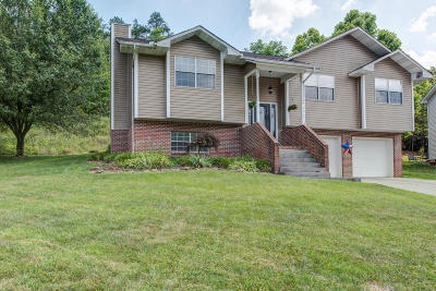Knoxville TN Single Family Home For Sale: $194,500