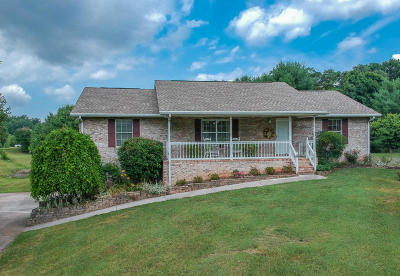 Maryville Single Family Home For Sale: 3105 Eagle Drive