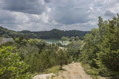 Sevierville Residential Lots & Land For Sale: 1424 Parrots Chapel Rd