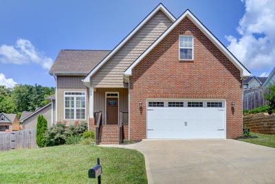 Knoxville TN Single Family Home For Sale: $254,900