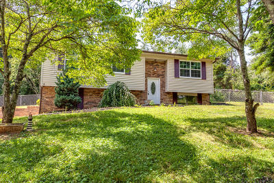 Hamblen County Single Family Home For Sale: 735 Roddy Drive
