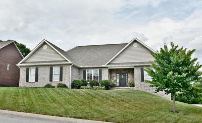 Loudon County Single Family Home For Sale: 1132 Biscayne Drive