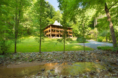 Sevierville Single Family Home For Sale: 3014 N Clear Fork Rd