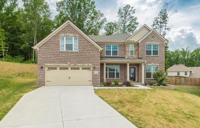 Knoxville Single Family Home For Sale: 12603 Sailpointe Lane