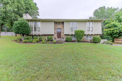 Knoxville Single Family Home For Sale: 6117 S Apopka Drive