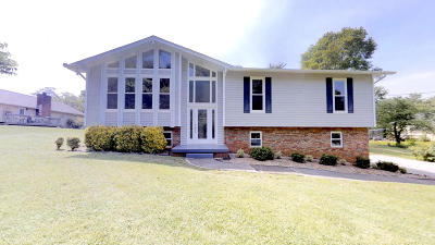 Knoxville Single Family Home For Sale: 1734 Colonade Rd