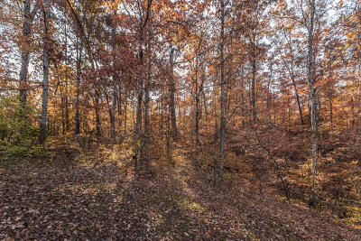 Knoxville Residential Lots & Land For Sale: Oglesby Rd