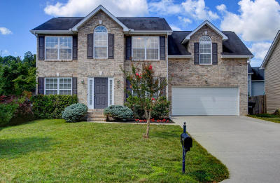 Knoxville Single Family Home For Sale: 3131 Champions Trail Lane