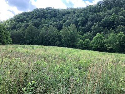 Tazewell Residential Lots & Land For Sale: Upper Caney Valley Rd Rd
