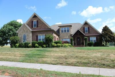 Sevierville Single Family Home For Sale: 1302 Rippling Waters Circle