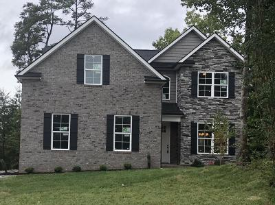 Knoxville Single Family Home For Sale: 1401 Willow Field Lane