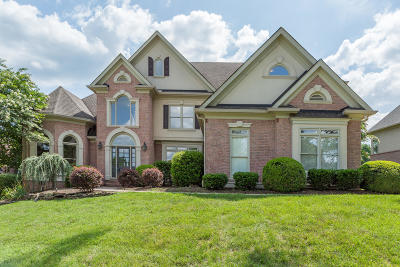 Knoxville Single Family Home For Sale: 1009 Shadow Brook Drive
