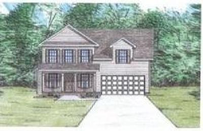 Sevierville Single Family Home For Sale: 2743 Southwinds Circle