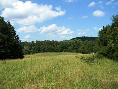 White Pine Residential Lots & Land For Sale: Lots 1&11 Parsonage Rd