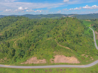 Tazewell Residential Lots & Land For Sale: Marina Landing Rd #108