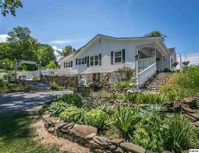 Sevierville Single Family Home For Sale: 1201 W Main St