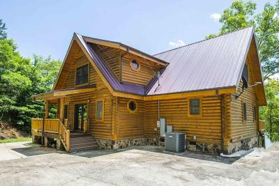 Anderson County, Campbell County, Claiborne County, Grainger County, Union County Single Family Home For Sale: 432 Powder Mill Lane