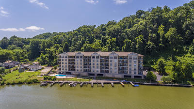 Blount County, Knox County, Loudon County, Monroe County Condo/Townhouse For Sale: 3001 River Towne Way #502
