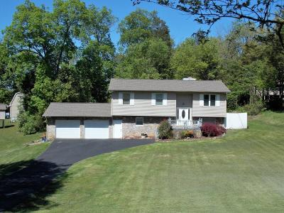 Alcoa, Friendsville, Greenback, Knoxville, Louisville, Maryville, Rockford, Sevierville, Seymour, Tallassee, Townsend, Walland, Lenoir City, Loudon, Philadelphia, Sweetwater, Vonore, Coker Creek, Englewood, Madisonville, Reliance, Tellico Plains Single Family Home For Sale: 4442 Wonderland Drive