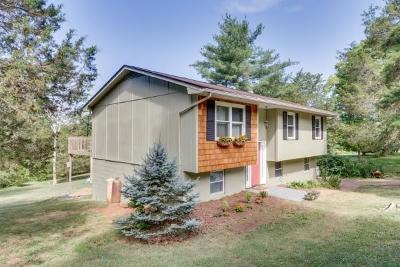 Blount County Single Family Home For Sale: 3431 Ralph Phelps Rd