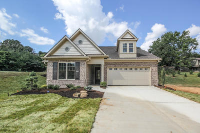 Maryville Single Family Home For Sale: 121 Broady Meadow Circle