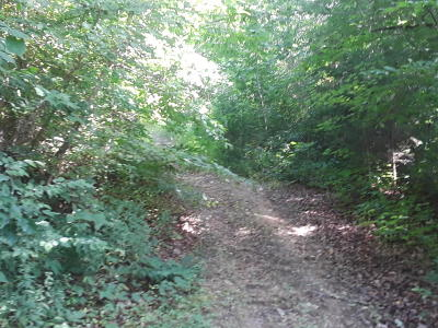 New Tazewell Residential Lots & Land For Sale: Edwards Hollow Rd