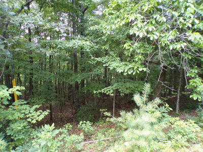 Fairfield Glade Residential Lots & Land For Sale: 32 Benwick Court