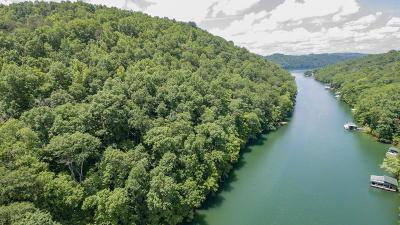 Anderson County, Campbell County, Claiborne County, Grainger County, Union County Residential Lots & Land For Sale: Lots 41&42 Jessee Rd