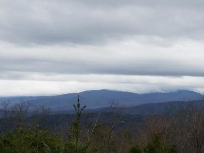 Blount County, Loudon County, Monroe County Residential Lots & Land For Sale: 5696 Abrams View Tr