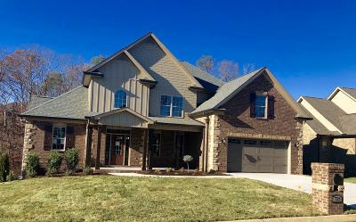 Knoxville Single Family Home For Sale: 725 Bent Ridge Lane
