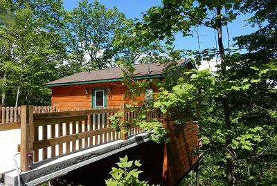 Gatlinburg Single Family Home For Sale: 1454 Nordic Dr Drive