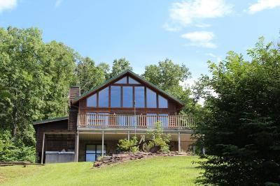 Sevierville Single Family Home For Sale: 1037 Mountain Scenic Way