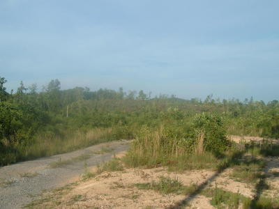 Residential Lots & Land For Sale: 00 Reed Rd