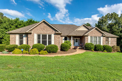 Loudon Single Family Home For Sale: 6675 Riverview Golf Drive