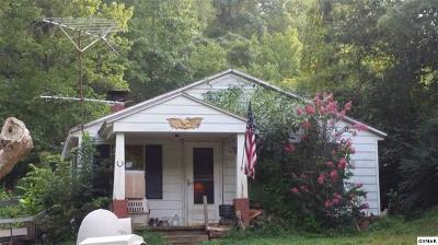 Sevierville Single Family Home For Sale: 542 Lane Hollow Rd