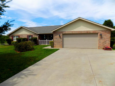 Sevierville Single Family Home For Sale: 1449 Sparks Lane