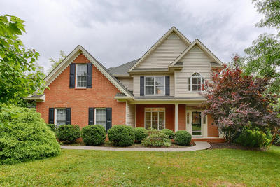 Lenoir City Single Family Home For Sale: 419 Dixie Meadows Drive