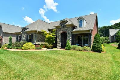 Knoxville Single Family Home For Sale: 11254 Matthews Cove Lane